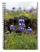 Lupines Spiral Notebook