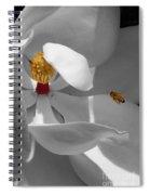 Lure Spiral Notebook