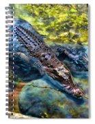 Lurking 1 Spiral Notebook