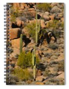 Lush Arizona Desert Landscape Spiral Notebook