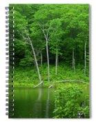 Lush Green Pond Spiral Notebook