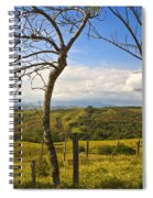 Lush Land Leafless Trees I Spiral Notebook
