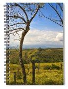 Lush Land Leafless Trees I Spiral Notebook