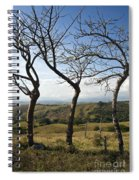 Lush Land Leafless Trees Iv Spiral Notebook