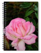 Lustrous Pink Rose Spiral Notebook