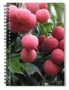 Lychee Spiral Notebook