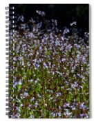 Lyre Leaf Sage Spiral Notebook