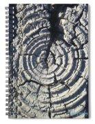 M Scored Into A Log Spiral Notebook