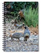 Ma And Pa Quail Spiral Notebook