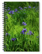Ma At Irises Spiral Notebook