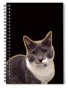 Mac Attack 2-custom Order Spiral Notebook