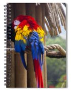 Macaw Spiral Notebook