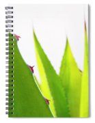 Mack The Knife 2 Spiral Notebook