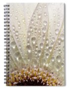 Macro Close Up Of A Daisy Flower Spiral Notebook