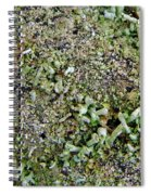 Macro Forest  Spiral Notebook