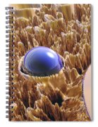 Macro Fractal With Blue Spheres Spiral Notebook