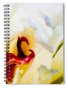 Macro Peonie Spiral Notebook