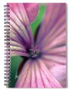 Macro Study II Spiral Notebook