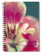 Macro Study IIi Spiral Notebook