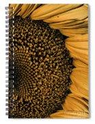 Macro Sunflower Spiral Notebook