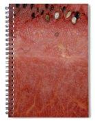 Macro Watermelon  Spiral Notebook