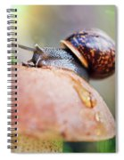 Macro World Spiral Notebook