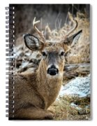 Made It Through Hunting Season Spiral Notebook