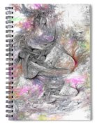 Madonnas Spiral Notebook