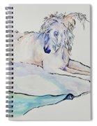 Maevis Spiral Notebook