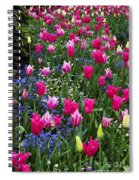 Magenta And White Tulips Spiral Notebook