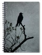 Magestic Crow Spiral Notebook