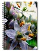 Magic Blossoms Spiral Notebook