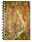 Magic In The Marsh Spiral Notebook