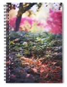 Magic Is Everywhere Spiral Notebook