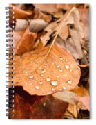 Magic Of Surface Tension Spiral Notebook