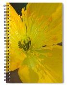 Magic Of The Golden Poppy Spiral Notebook