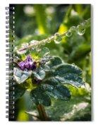 Magic Wand Spiral Notebook