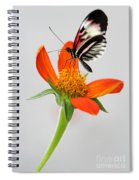 Magical Butterfly Spiral Notebook