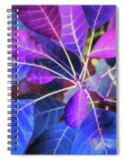Magical Color Spiral Notebook