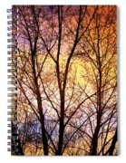 Magical Colorful Sunset Tree Silhouette Spiral Notebook