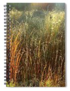 Magical Light On The Marsh Spiral Notebook