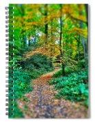 Magical Woodland Walk Spiral Notebook