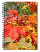 Magnificent Maple Leaves Spiral Notebook
