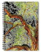 Magnificent Tree Spiral Notebook