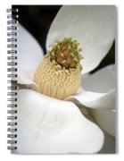Magnolia 2 Spiral Notebook