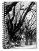 Magnolia Ave Spiral Notebook
