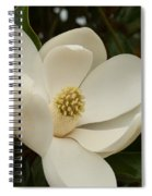 Southern Magnolia Bloom Spiral Notebook