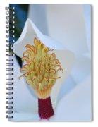 Magnolia Blossom 1 Spiral Notebook