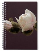 Magnolia Blossoms Spiral Notebook
