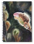 Magnolia Bud By Irina Sztukowski  Spiral Notebook